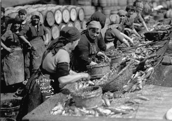 Women gutting herring in the 1920s